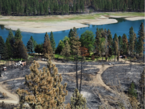 Cayse Cove, Lake Roosevelt after the Hart Road Fire. Photo credit: Val Vissia, Lincoln County Conservation District