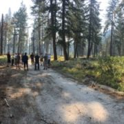 """Telling the Story of """"Good Fire"""": Two Communities' Prescribed Fire Outreach Efforts"""