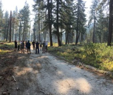 "Telling the Story of ""Good Fire"": Two Communities' Prescribed Fire Outreach Efforts"