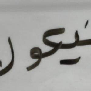 Nicole in Arabic